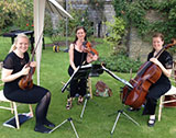 The Seasons Quartet picture