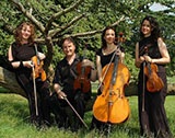 The Devon String Quartet picture