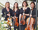 The Harrogate String Quartet picture